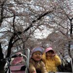 仙台市太白区~りっきーぱーく保育園あすと長町~ 笑顔満開🌸